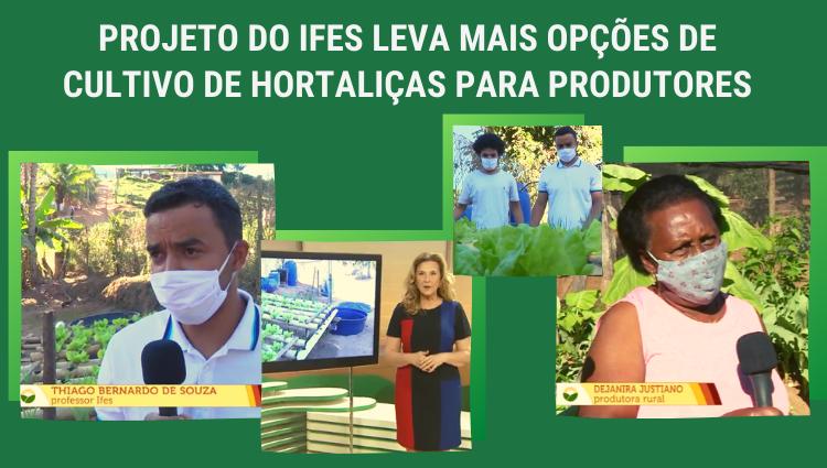 Projeto do Ifes leva mais opções de cultivo de hortaliças para produtores